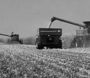 farm ag